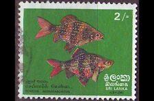 CEYLON SRI LANKA [1972] MiNr 0431 ( O/used ) Fische