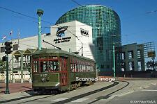 Original Photograph: New Orleans 947 at Aquarium