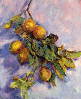 Oil painting Claude Monet - Lemons on a Branch nice still life canvas