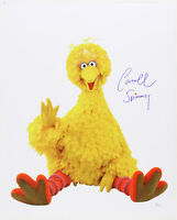 "1969-2016 Caroll Spinney ""Big Bird"" Sesame St LE Signed 16x20 Color Photo (JSA)"