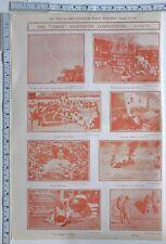 1910 Inde Imprimé Benoit Burma Doré Lavage Mariage de Tulsi Plante Mhow