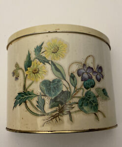 Vintage The Tin Box Company Daher Container Made in England Flowers Ivy Garden