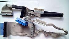 Cavo IDE Disk Drive & CD 39K5024 89P6826 48cm + Cavo Floppy Disk 351163-003 44cm