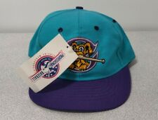 VTG MiLB CHARLESTON RIVERDOGS Minor League Ed's West Signature SnapBack HAT NWT
