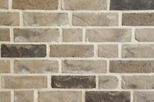 Handform-Verblender NF BH1039 grau-beige-bunt Klinker Vormauersteine