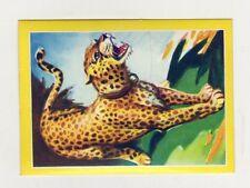 figurina - ANIMALI FLASH - numero 81