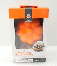 Bat Mini Pumpkin Decorating Kit