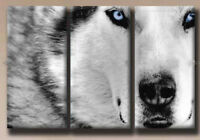 CHOP832 100% hand painted modern 3pc animal wolf oil painting art on canvas