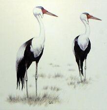 Bird MALAWI WADER WWF Bird PANEL PAD Premier Day 1° FDC 495