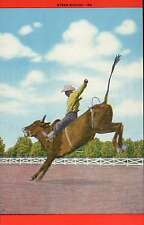 Western Rodeo Steer Riding, Cowboy on Bucking Bull, 8 , Eight Seconds - Postcard