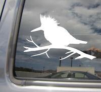 Kingfisher Bird - Paradise Car Laptop Bumper Window Vinyl Decal Sticker 01432