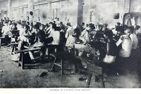 Interior of a Manila Cigar factory Print 1907 America Far East Japan Philippines