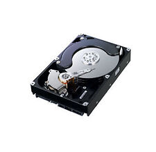 "Samsung Spinpoint HD103UJ SATA 1 TB 1000 GB 32 MB 7200 Rpm 3.5"" Disco Duro Disco"