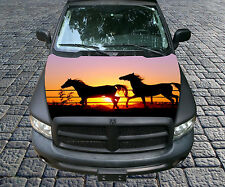 H107 HORSE HORSES Hood Wrap Wraps Decal Sticker Tint Vinyl Image Graphic