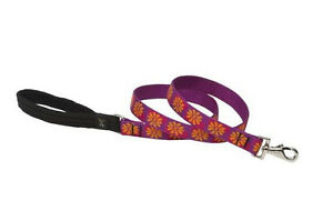 "LUPINE DOG LEAD LEASH 1"" Nylon 6 or 4 foot Flower Box  padded handle"