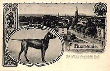 Buxtehude, Teilansicht, Hund, 1937, Bahnpost