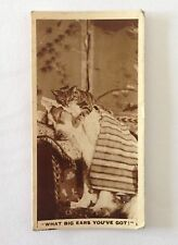 Cat And Dog De Reszke 1932 Real Photographs Rare Cigarette Card (B71)