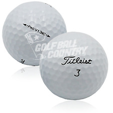24 Titleist Pro V1 392 AAA (3A) Used Golf Balls - FREE Shipping