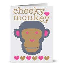 24 Note Cards - Bold Monkey - Gray Envs