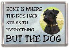 "Patterdale Terrier Dog Fridge Magnet ""Home is Where"" Design by Starprint"