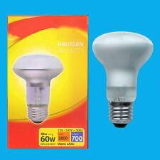 x 25 46W (=60W) Halogène R63 à variation perle spot réflecteur lampe Es E27