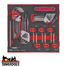 TENG TOOLS TEDHT42 T4 SALE! Hex Allen Key Torx Master Key Set In Foam WITH Case