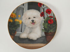 "The Danbury Mint ""A Perfect View"" Bichon Frise Collector Plate A1868"