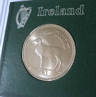 1998 Republic of Ireland Eire Irish Pre Euro £1 Punt Pound Coin (BU) in Display