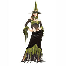 Maquerade Concepts Wicked Witch Adult Costume Size: Medium (10-14) 888055