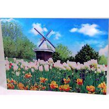 3 D Effekt Bild 39 x 29 cm Bilder Poster Windmühlen Holland Natur Windmühle  B
