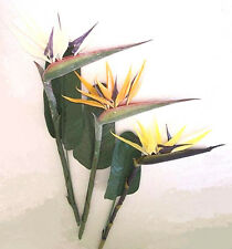 Artificial silk flowers & plants L.Bird Of Paradise F40