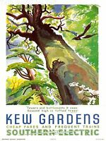 ART PRINT POSTER VINTAGE TRAVEL KEW GARDENS SOUTHERN ELECTRIC TREE BIRD NOFL1532