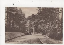 East Grinstead Blackwell Hollow & East Court Sussex Vintage Postcard 688a