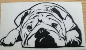 1x English Bulldog Dog Love Pet Animal Vinyl Sticker Bumper Decal Graphic 7x4in