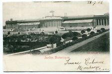 CPA - Carte Postale - Belgique - Bruxelles - Jardin Botanique - 1902 (B8878)