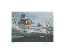 TEXAS #11 1991 STATE DUCK STAMP PRINT WOOD DUCKS by Daniel Smith 2 stamps