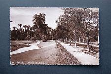 Ismailia, Avenue De Lesseps, Egypt, Vintage RP Pre 1910 Postcard Carte Postale