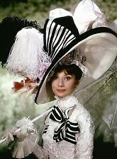 PHOTO AUDREY HEPBURN - MY FAIR LADY - 11X15 CM  # 1