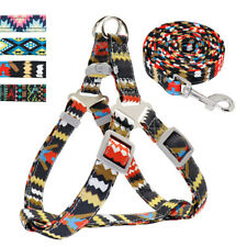 Step-In Nylon Dog Harness and Leash Strap Walking Vest Lead for Small Large Dogs