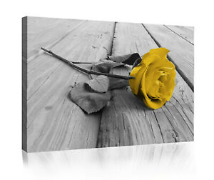 Yellow Canvas Pictures For Sale Ebay