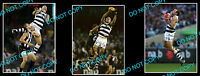 BRAD OTTENS GEELONG FC CATS SIGNED PHOTO +2 PHOTOS