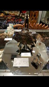 2121 gram - LARGE NANTAN IRON METEORITE + small meteorite and cut/polished slab!