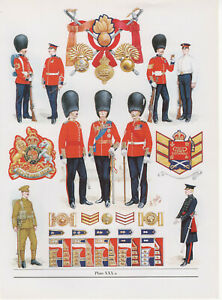 Vintage British Uniform Print c1914 The Grenadier Guards