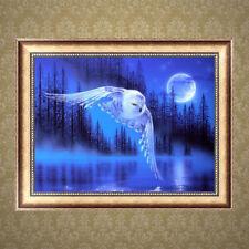 5D Diamond Owl Lake Embroidery Painting Rhinestone Cross Stitch DIY Mosaic Craft