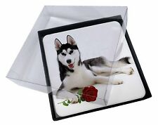 4x Siberian Husky with Red Rose Picture Table Coasters Set in Gift Box, AD-H55RC
