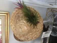 Small Hat Ionantha Air Plant Arrangement Can be Hanged