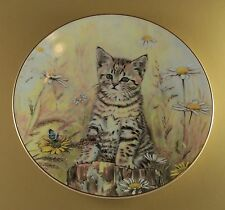 Tiger'S Fancy Cat Kitten Plate Kitten Classics Daisies