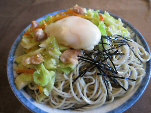 Realistic Japanese Food Noodles & Salad Artificial Faux Fake Replica Display