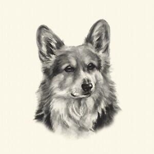 Dog Show Ring Number Clip Pin Breed - Corgi