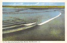 B5217 New Brunswick Moncton Petitcodiac River